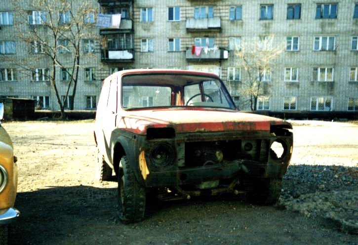 pusy_niva